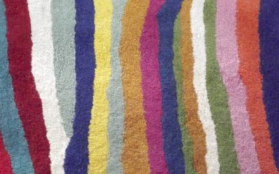 Our Carpet Cleaning Company Services: Sunshine Carpet Cleaning